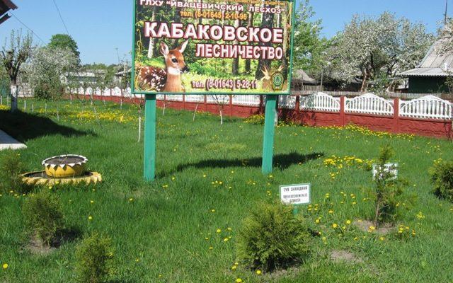 Кабаковское лесничество