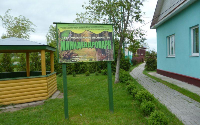 Гута-Михалинское лесничество