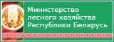 Сайт Министерства лесного хозяйства