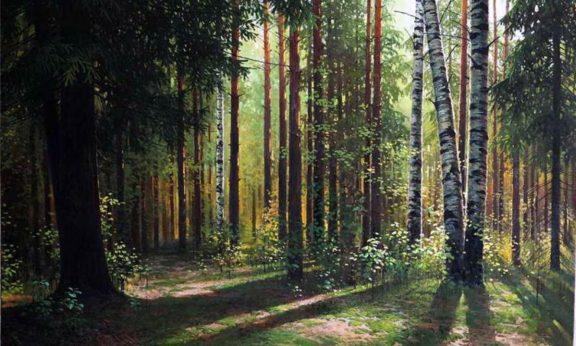 Совет Республики отметил заслуги лесоводов страны